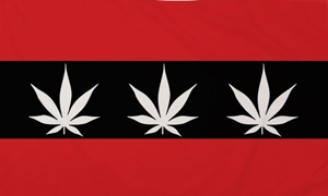 Image of   Amsterdam Marijuana Flag (90x150cm)