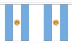 Image of   Argentina Guirlander 9m (30 flag)