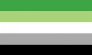 Image of   Aromantic Flag (90x150cm)