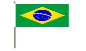 Image of   Brasilien Håndflag (30x45cm)