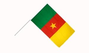 Image of   Cameroon Håndflag (15x22cm)