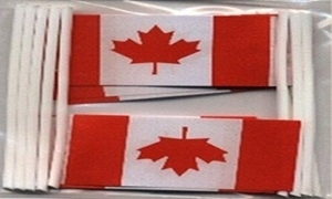 Image of   Canada Kageflag (30x48mm)