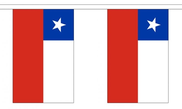 Image of   Chile Guirlander 3m (10 flag)