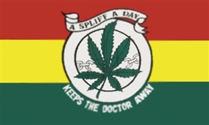 Image of   Keep The Doctor Away Flag (90x150cm)