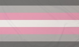 Image of   Demigirl Flag (90x150cm)