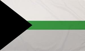 Image of   Demiromantic Flag (90x150cm)