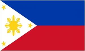 Image of   Filippinerne Flag (90x150cm)