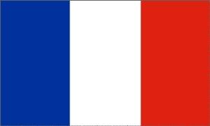 Image of   Frankrig Flag (90x150cm)