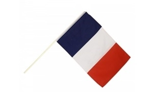 Image of   Frankrig Håndholdt Papirflag (20x27cm)