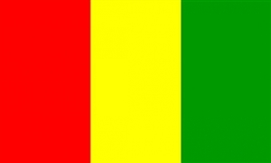 Image of   Guinea Flag (90x150cm)