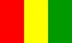 Billede af Guinea Flag (90x150cm)