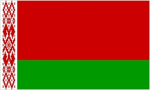 Image of   Hviderusland Flag (90x150cm)