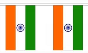 Image of   Indien Guirlander 9m (30 flag)