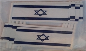 Image of   Israel Kageflag (30x48mm)