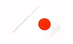 Image of   Japan Håndholdt Papirflag (20x27cm)