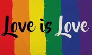 Image of   Love Is Love Flag (90x150cm)