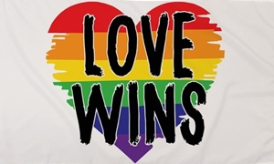 Image of   Love Wins Flag (90x150cm)