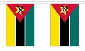 Image of   Mozambique Guirlander 9m (30 flag)