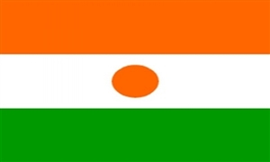 Image of   Niger Flag (90x150cm)
