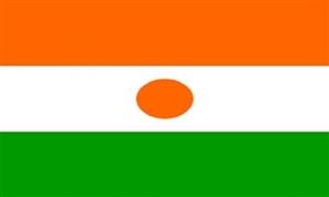 Billede af Niger Flag (90x150cm)