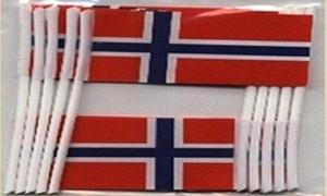 Image of   Norge Kageflag (30x48mm)