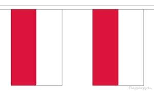 Image of   Polen Guirlander 3m (10 flag)