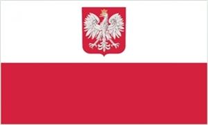 Image of   Polen med Ørn Flag (90x150cm)