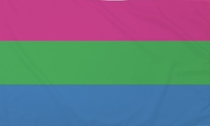 Image of   Polysexual Pride Flag (90x150cm)