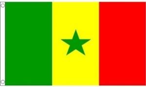 Billede af Senegal Flag (90x150cm)