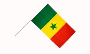 Image of   Senegal Håndflag (15x22cm)