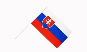 Image of   Slovakiet Håndholdt Papirflag (20x27cm)