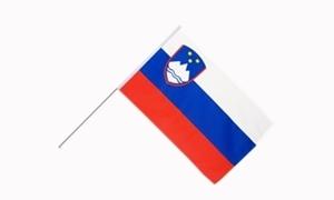 Image of   Slovenien Håndholdt Papirflag (20x27cm)
