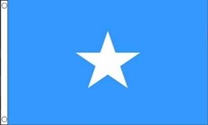 Billede af Somalia Flag (90x150cm)