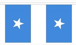 Image of   Somalia Guirlander 9m (30 flag)