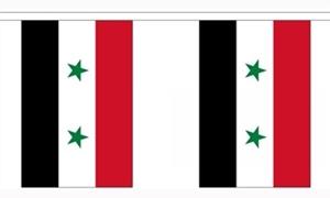 Image of   Syrien Guirlander 9m (30 flag)