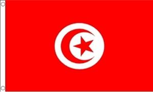 Billede af Tunesien Flag (90x150cm)