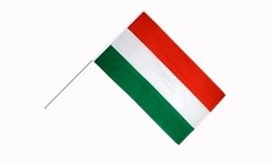 Image of   Ungarn Håndholdt Papirflag (20x27cm)