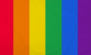 Image of   Vertical Rainbow Flag (90x150cm)
