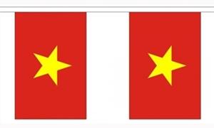 Image of   Vietnam Guirlander 9m (30 flag)