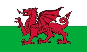 Image of   Wales Flag (90x150cm)