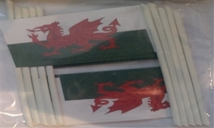 Image of   Wales Kageflag (30x48mm)