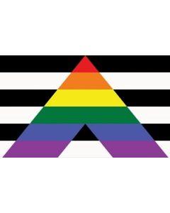 Straight Ally Flag (90x150cm)