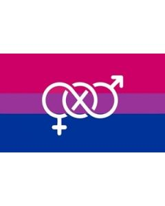 Bi-Pride Symbol Flag (90x150cm)
