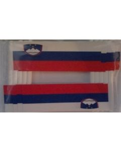 Slovenien Kageflag (30x48mm)