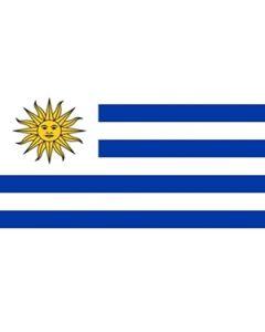 Uruguay Flag (60x90cm)